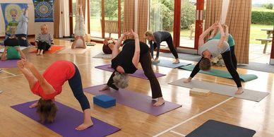 photos and testimonials  penny jolly yoga