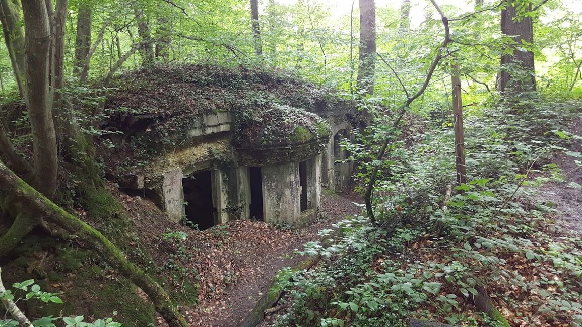Geoffrey Wawro visit to German bunker attacked by the A.E.F. in the Argonne Forest in Sept. 1918.