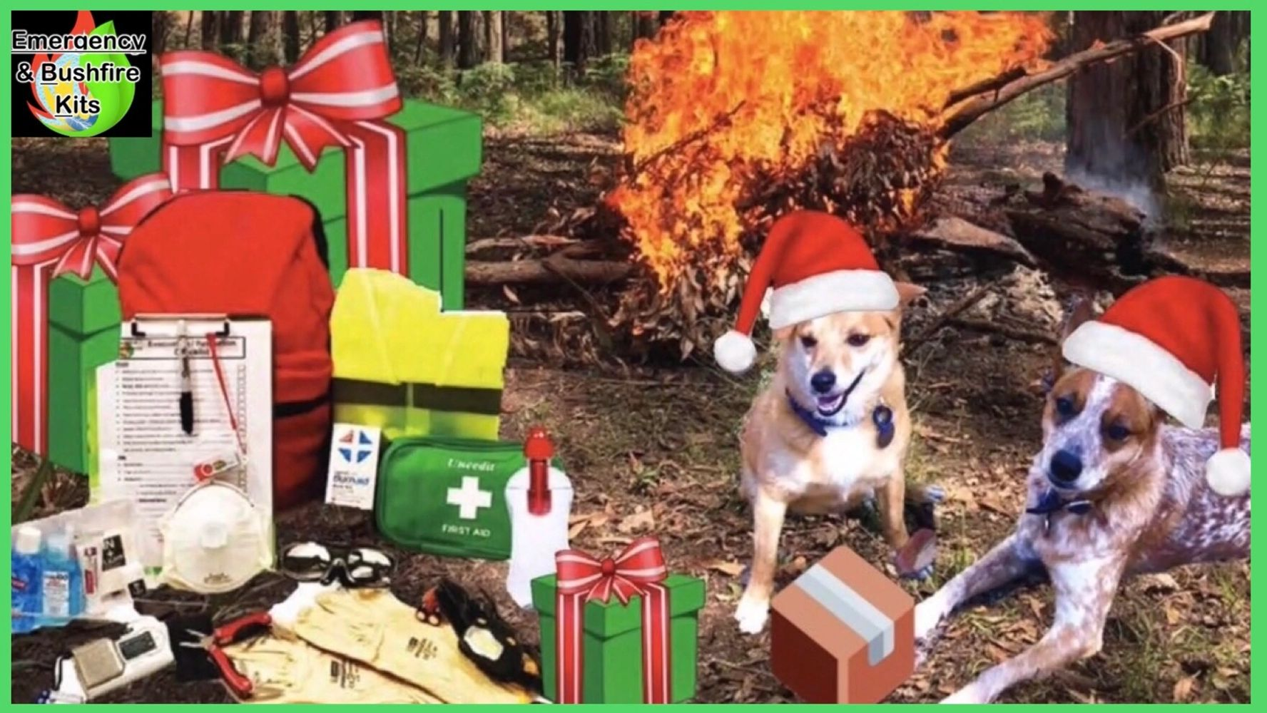 Emergency Kits Survival kit Safety Gear fire bushfire dogs Christmas online Australia storm prepared