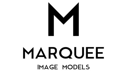 Marquee Image Models