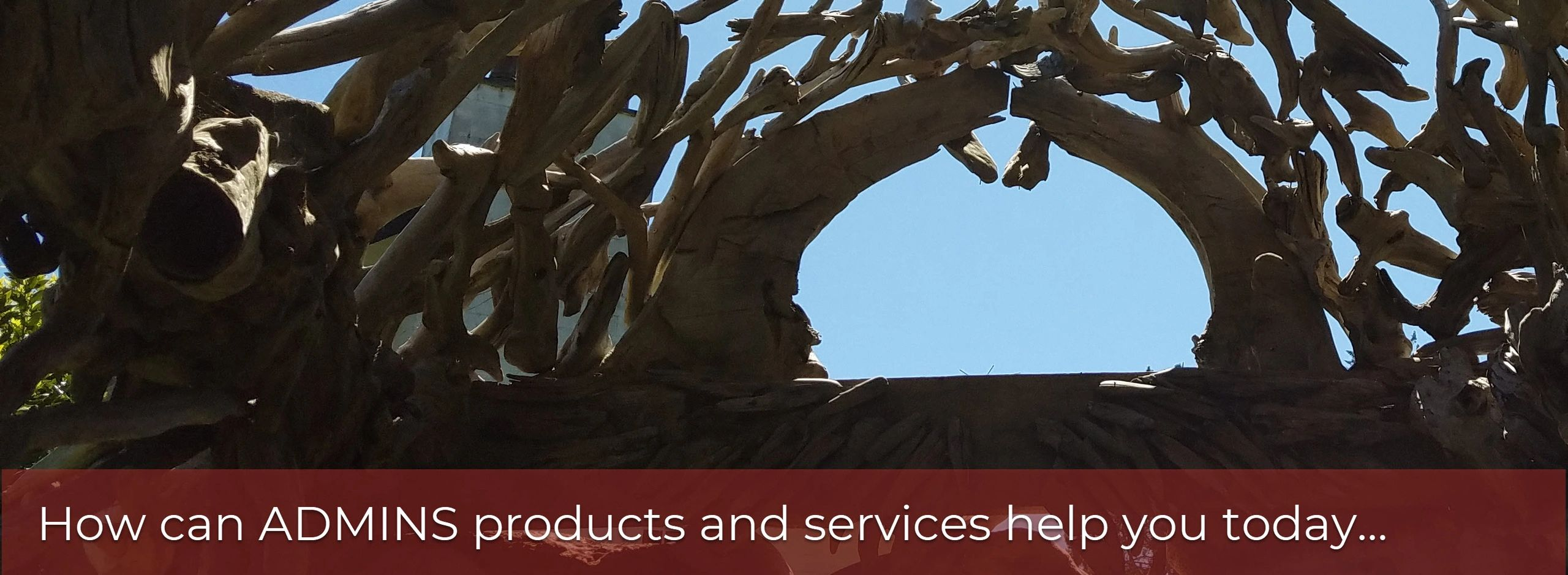 How can ADMINS products and services help you get through the tangle and into the bright sky