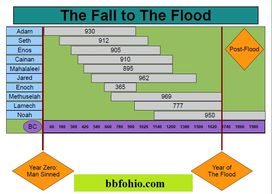 The Fall to The Flood