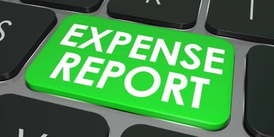 D365 Expense Report Software, Approvals with Employee Portal  for Telcos and Telecom organizations
