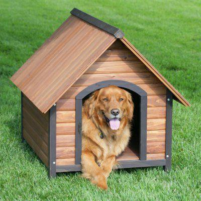 My Million Dollar Idea Is A Wooden Dog House Craft Kit