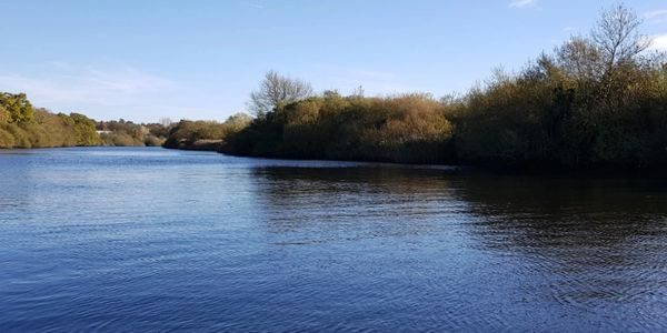 guided fishing trips with fishing in norfolk on the norfolk broads national park