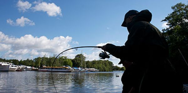 guided fishing trips on th norfolk broads with fishing in norfolk