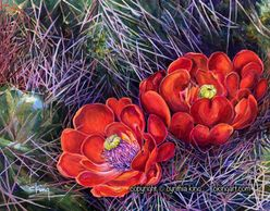 Flower painting, cactus flowers, red flowers, Joshua Tree California, floral painting, acrylic