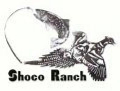 Shoco Ranch near Augusta MT for angling, fishing, bird hunting, guides #augustachamber