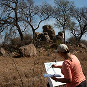 Painting while on safari in South Africa