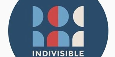 Click here to go to the National Indivisible Site.  Read the explainers and actions!