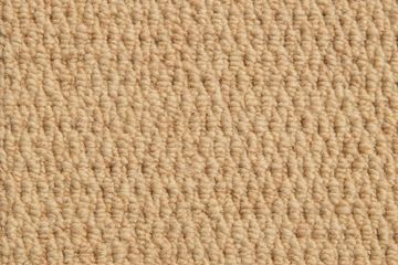 Abingdon WILTON ROYAL NEW ROYAL WINDSOR ivory carpet
