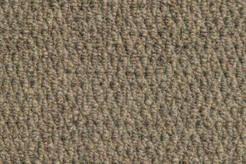 Abingdon WILTON ROYAL NEW ROYAL WINDSOR Truffle Carpet