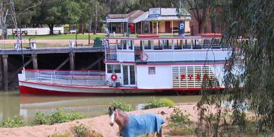 The Pyap Riverboat operating cruises on the Murray River at Swan Hill