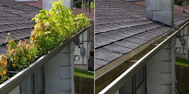 Gutter Cleaning Tips to Avoid Major Repairs