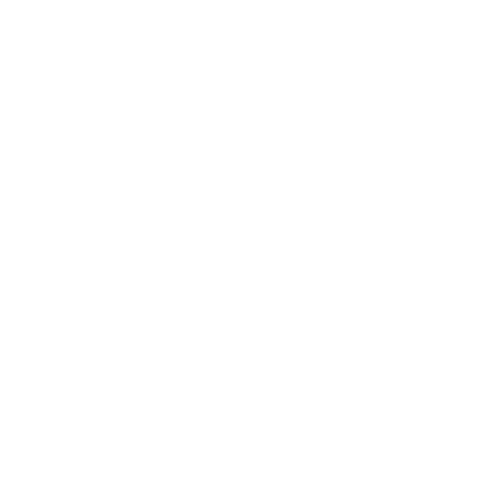 Purposeful Living