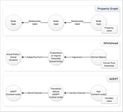 Comparing content terminology between property graphs, Whitehead's process of organism and ADEPT