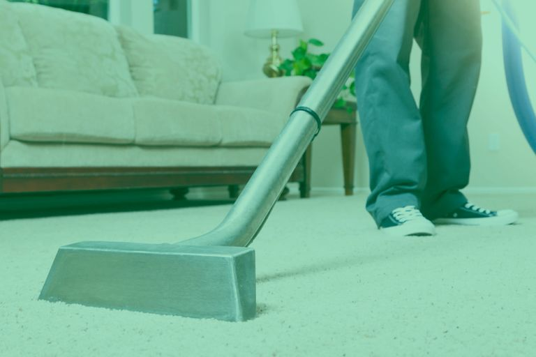 Immaculate Carpet Cleaning