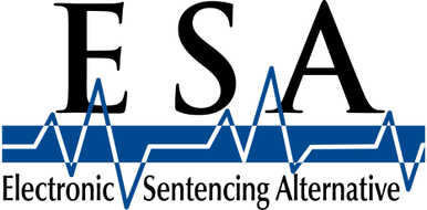 Electronic Sentencing Alternative