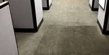 Commercial carpet cleaning in calgary