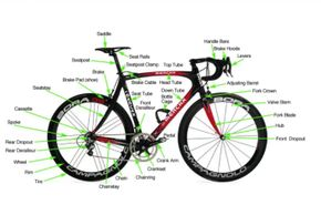 Becomin a better cyclist begins with learning the basic anatomy, lingo and basic differences