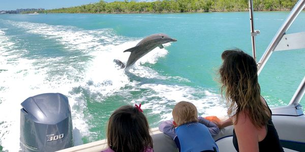 dolphin jumping in wake family watching marco island florida boat tour