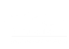 www.4elementsacademy.co.za