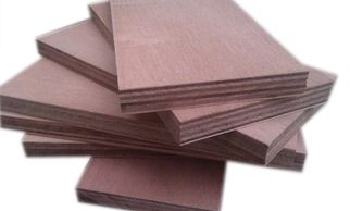 Gurjan Plywood Everest PLY