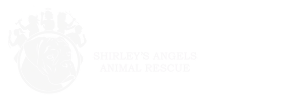 Shirley's Angels Animal Rescue