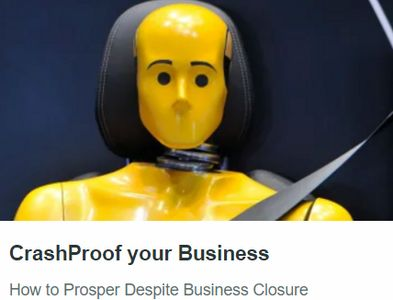 CrashProof Your business.