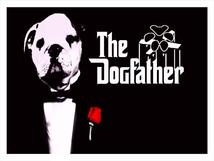 The Dogfather Training
