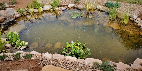 Beautiful ecosystem pond, built by Compass Outdoor Living in Redlands area of Grand Junction, CO