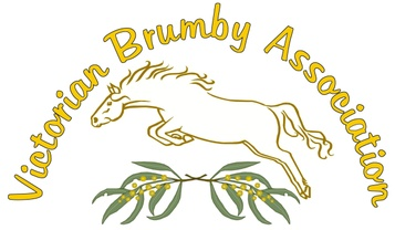 Victorian Brumby Association