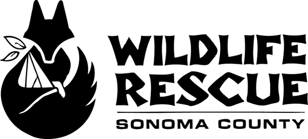Sonoma County Wildlife Rescue