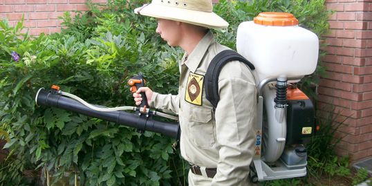 Mosquito treatments and control. Pest Safari 404 E. Cervantes St. Pensacola, FL. 32501