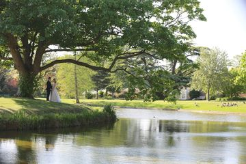 bride and groom underneath a tree next to a lake
