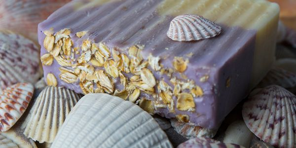 Lavender and oat natural soap bar with sea shell theme.