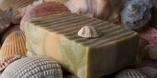 Natural soap made with pure citronella and eucalyptus essential oils in a shell theme.