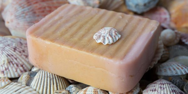 Natral soap bar made with pure rosemary and tea tree essential oils in scene with sea shells.