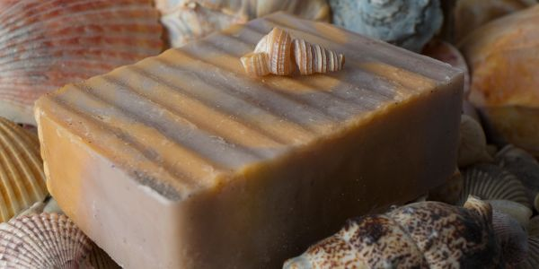Natural  soap in a sea shell theme