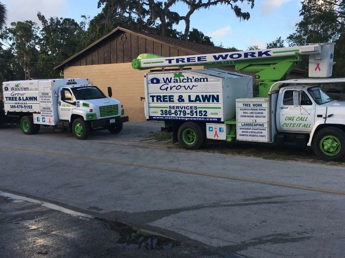 Tree Services Landscaping Lawn Services Excavation Demolitions Bob Cat Service Land Clearing Grading