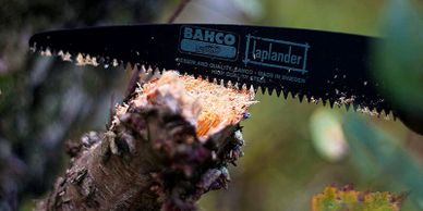 Bahco Laplander Folding Saw pictured cutting through a tree limb.