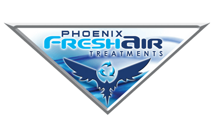 CAR ODOR REMOVAL | PHOENIX FRESH AIR