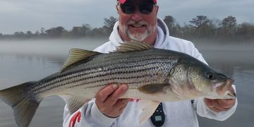 striper guide New Bern NC