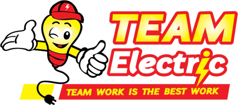 Team Elelctric Llc