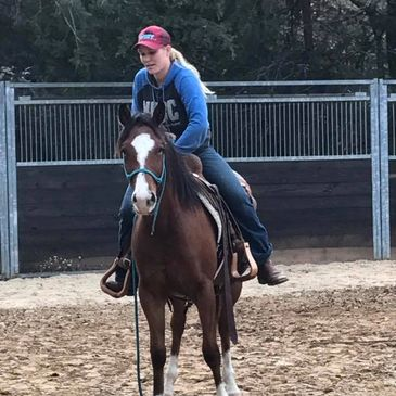 reining training  texas 2 year olds abby lengel horse