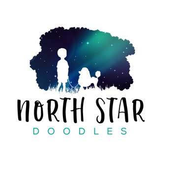 North Star Doodles
