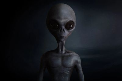Grays, Greys, gray aliens, alien types, alien agendas