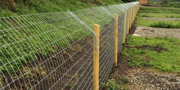 Otter and Badger Fencing