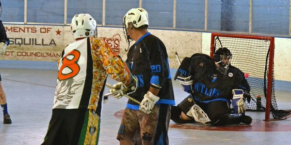 Goal on Box Lacrosse Goalie