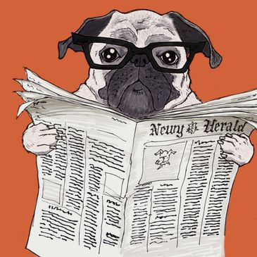 A picture of a dog wearing glasses and reading a newspaper. Click here to view our current news.